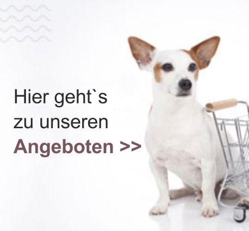 banner_angebote_sale